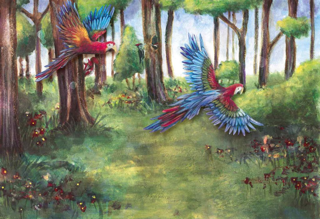 Illustration und Design Hamburg/Artwork/Illustration/Mute Parrot forest lullabies/amvspreckelsen